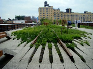 Photo of The High Line, NYC