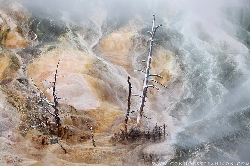 Mammoth Hot Springs, Yellowstone National Park, Photography by Connor Stefanison